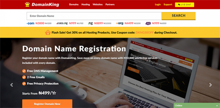 domainking.Ng hosting review