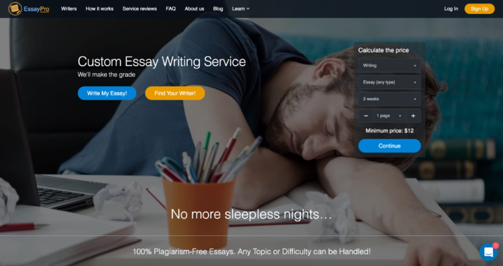 premium essay writing